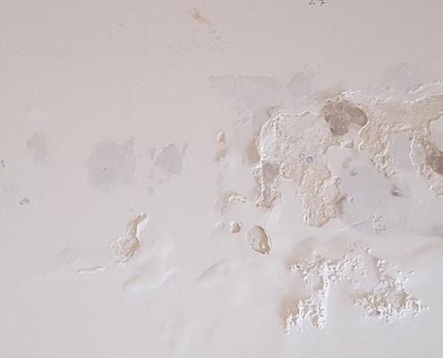 vochtschade muur